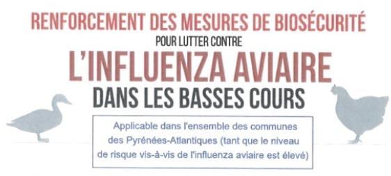 Influenza aviaire: rappels